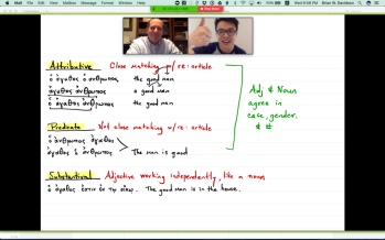 Zoom & GoodNotes for Online Teaching – Brian W  Davidson